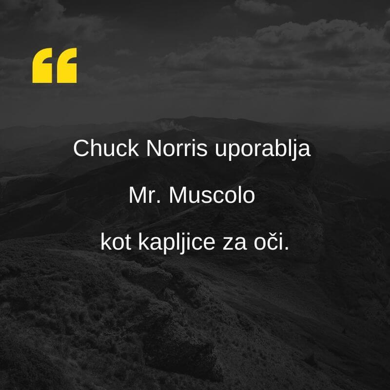 vic o Chuck Norrisu